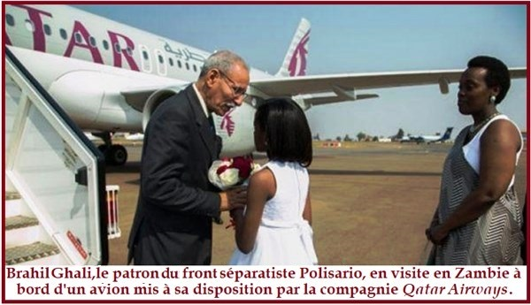 6-Qatar-Polisario.png